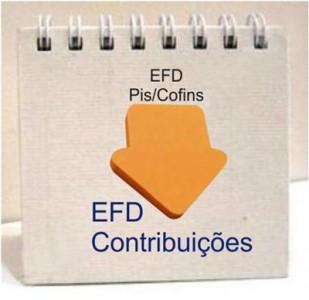 EFD-Contribuicoes-Dominus-Auditoria (Custom)